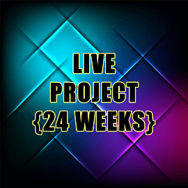Proitce_Live Project 24 weeks